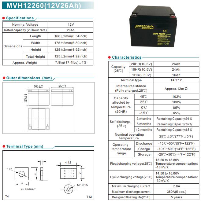 Bình ắc quy tủ báo cháy BTD-1224 (12 Vdc 24)